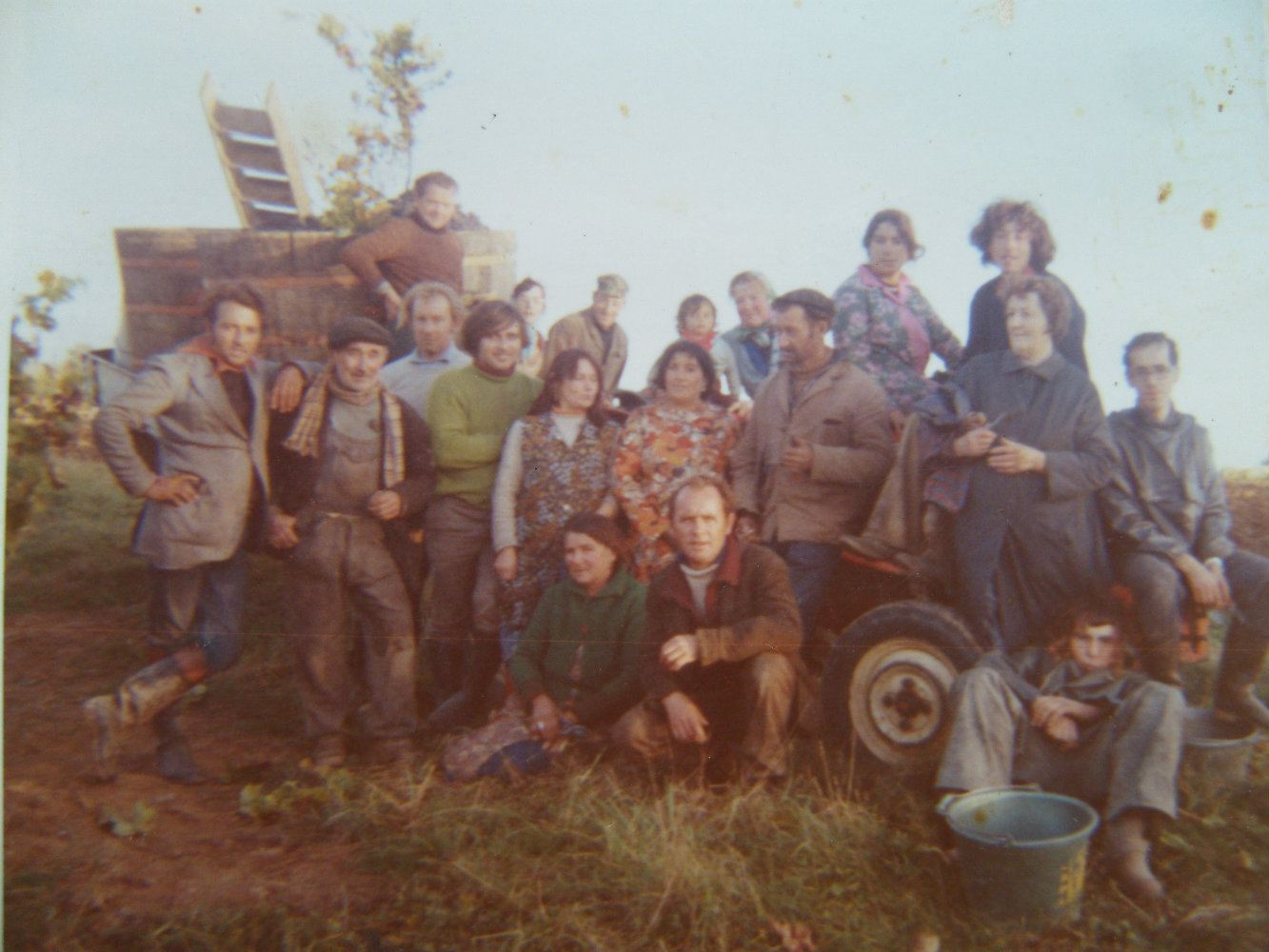 grape harvest 1972.jpg