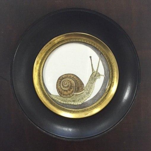 tiny snail.jpg