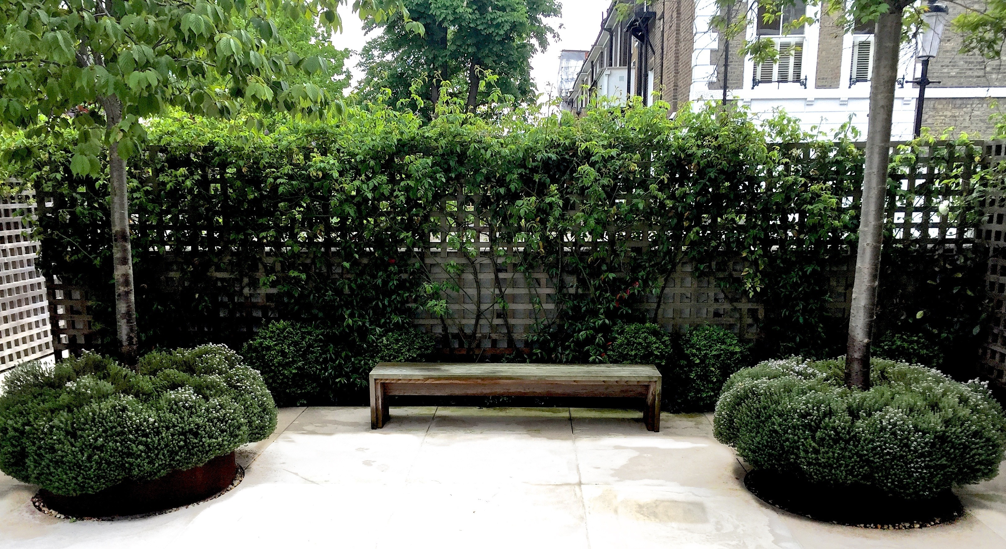 Chelsea Garden with standard trees and thyme