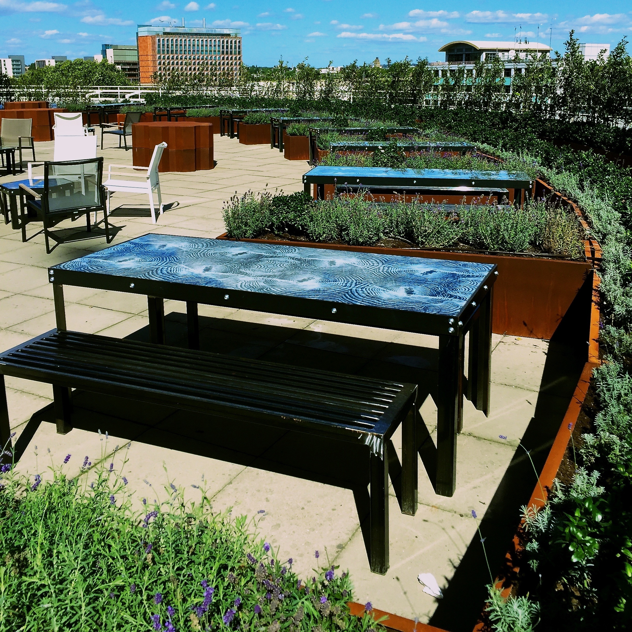 BBC Worldwide Roof Garden glass tables, metal benches, planters and lavender