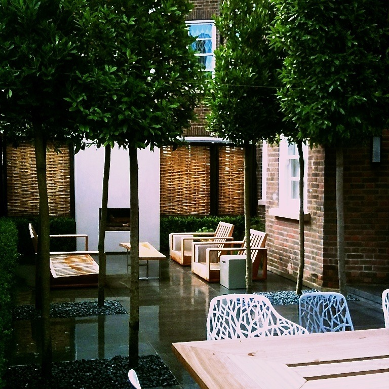 Contemporary London Garden