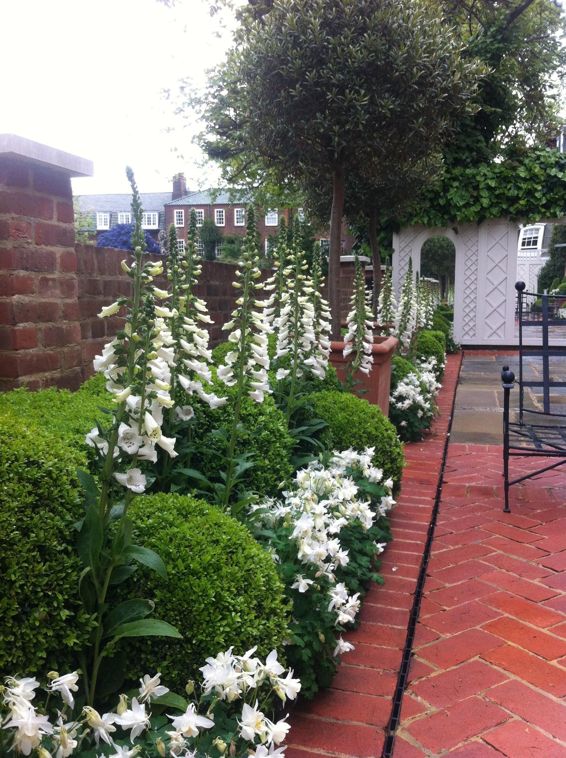 Chelsea Garden4.jpg