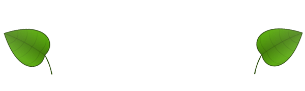 New Forest Storage and Workshops