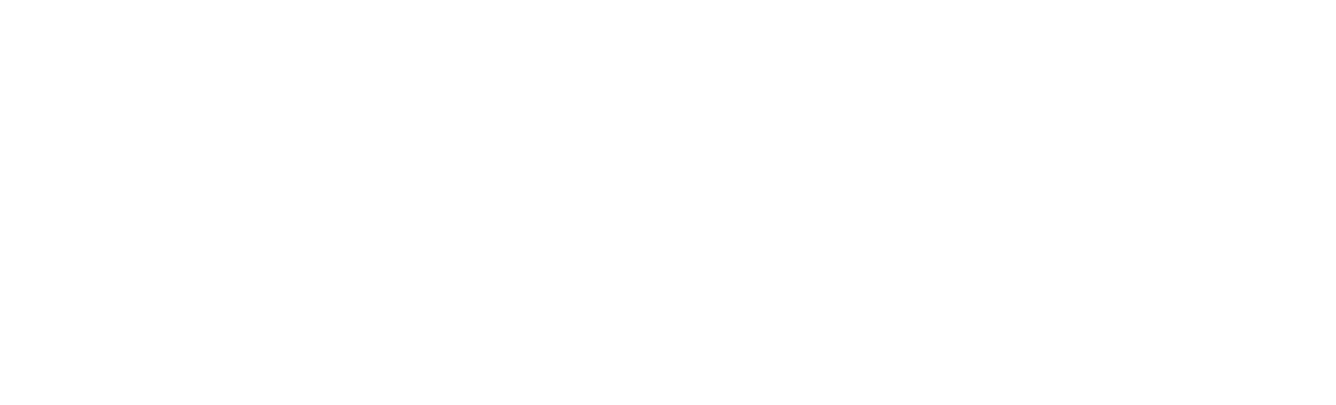 Voices Foundation logo