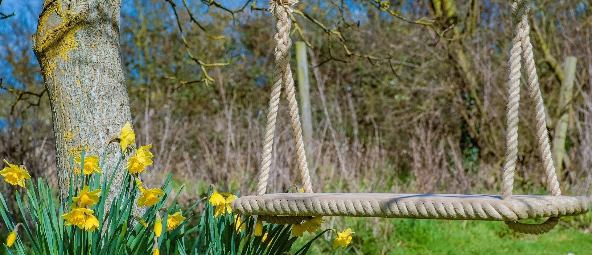 Traditional wooden rope tree swing by JC Gardens