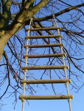 wooden and rope tree ladder