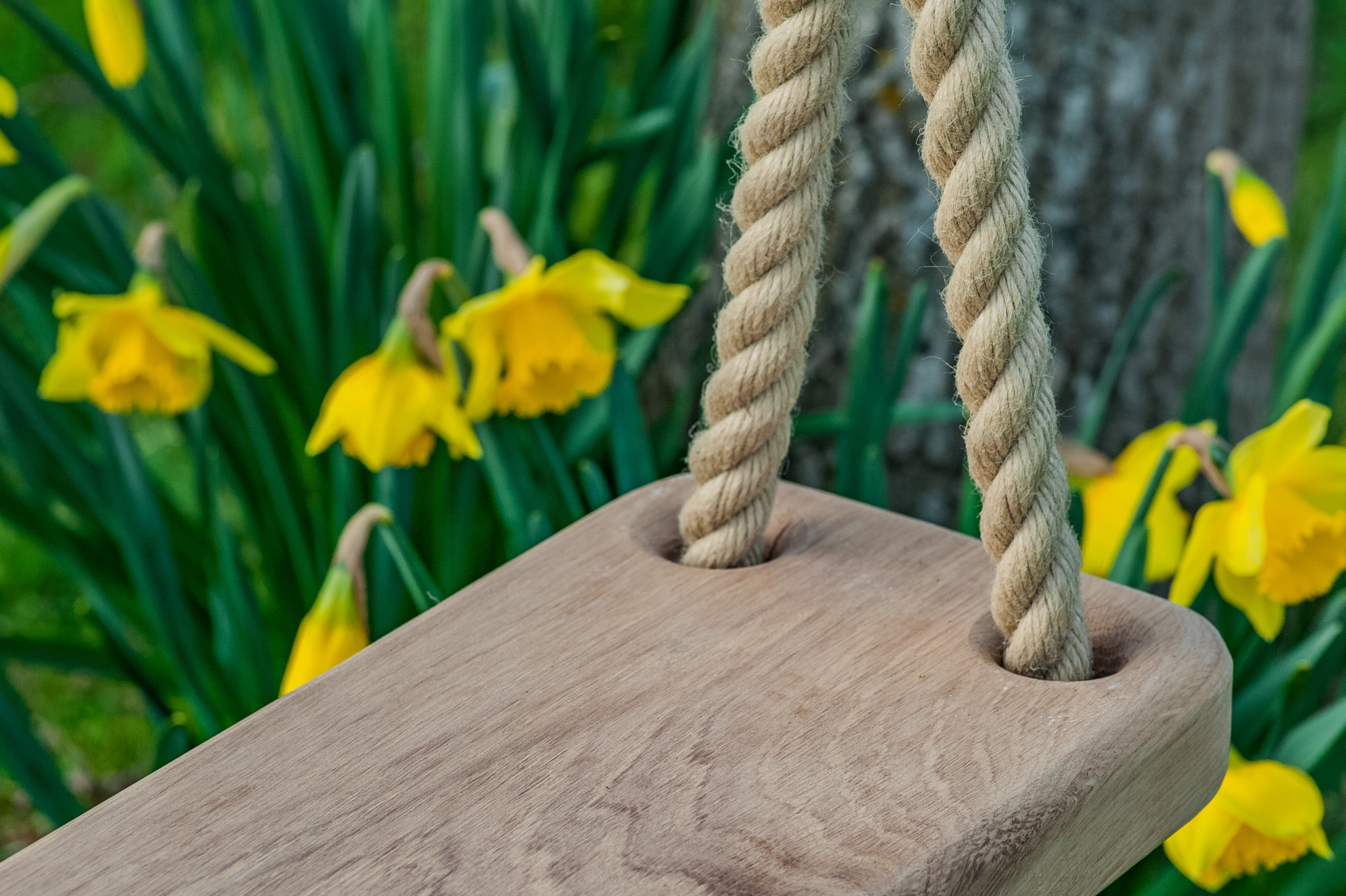 wooden tree swing - English Oak