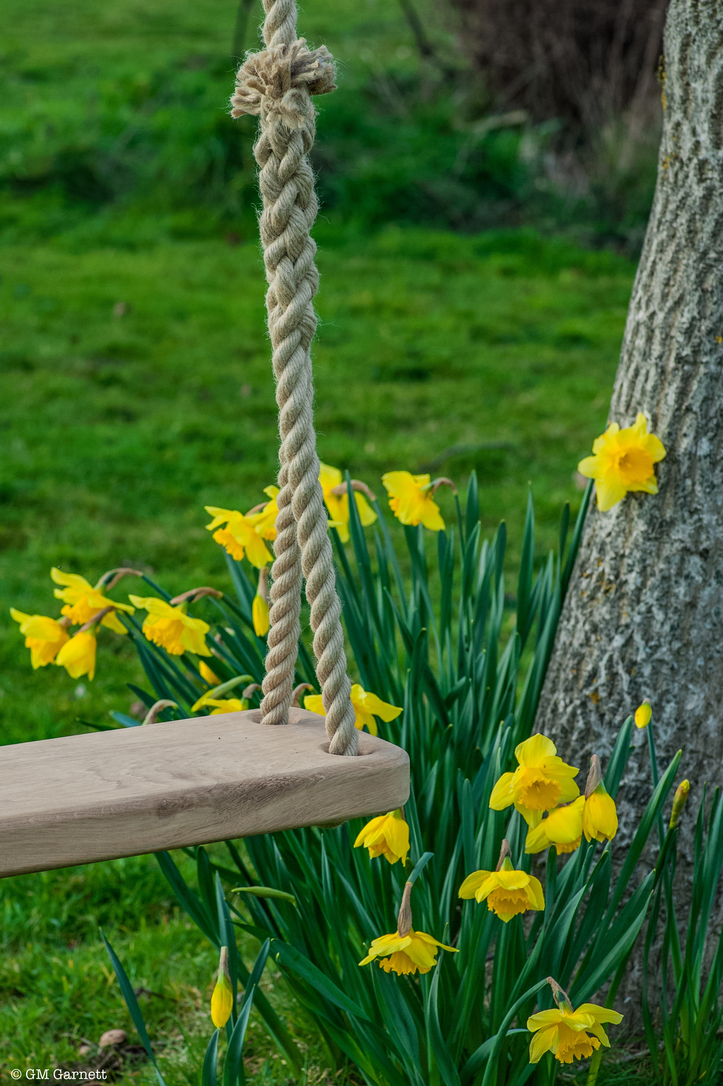 oak rope swing by JC Climbing Frames
