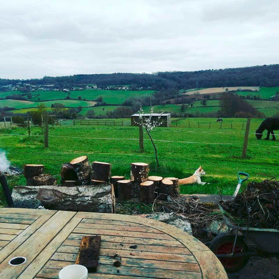 the_lovely_views_across_the_valley_at_applegates_glamping_site.jpg