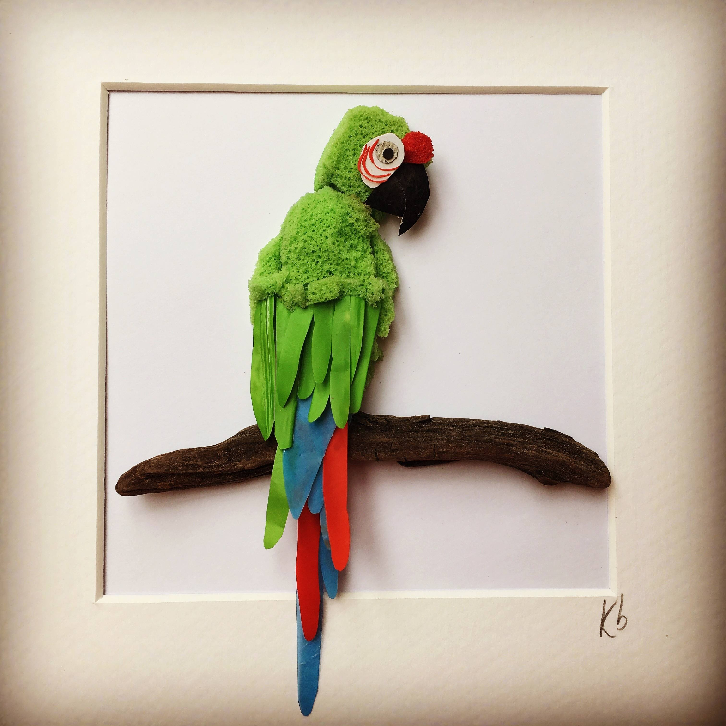 MARTIN THE MACAW