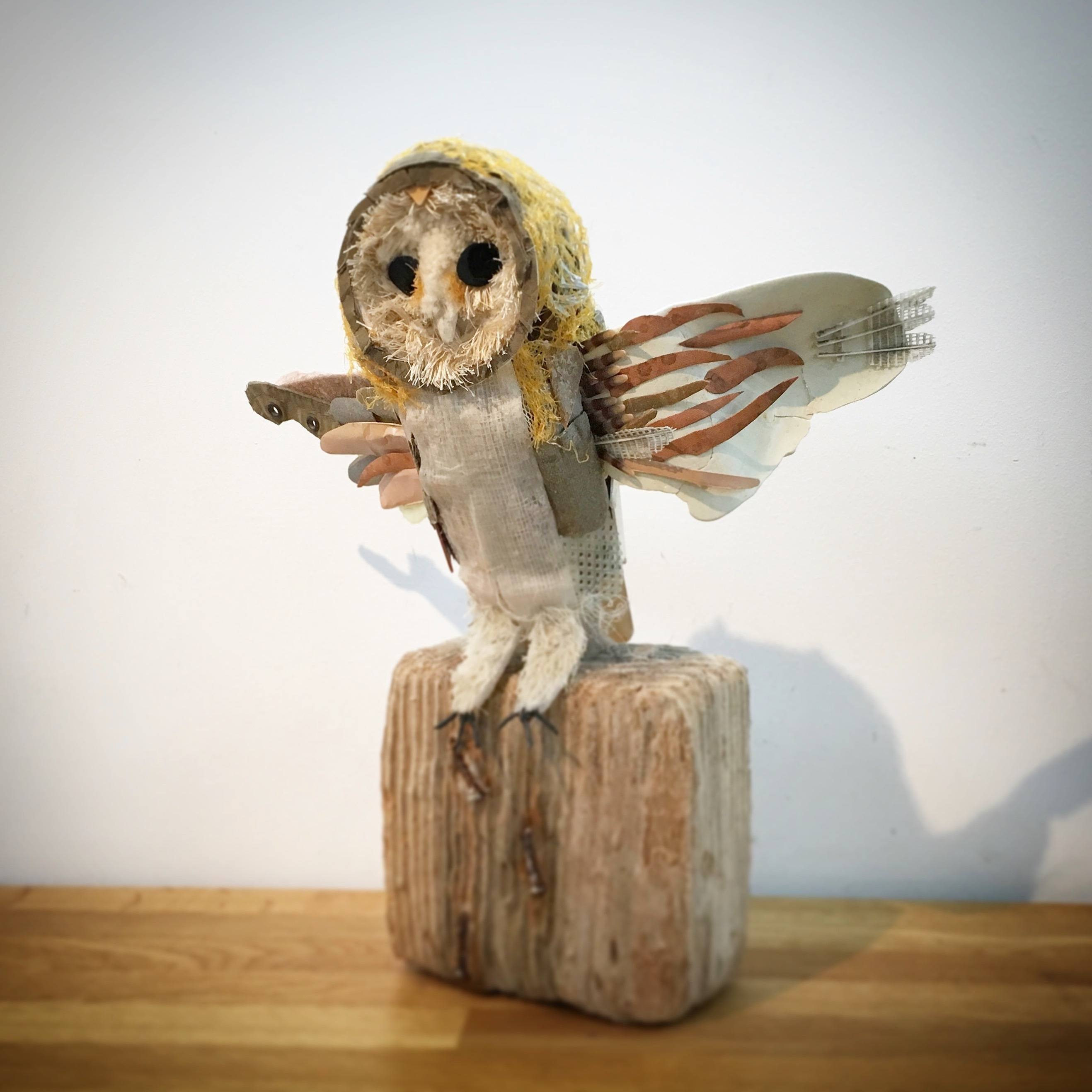 BILLY THE BARN OWL