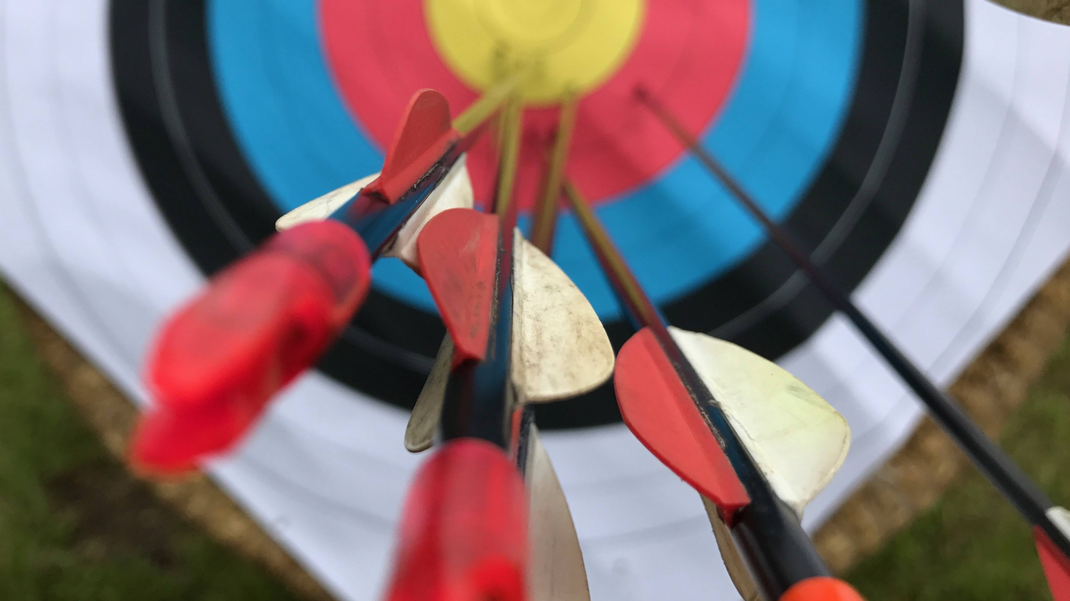 Arrows close up in target.jpg