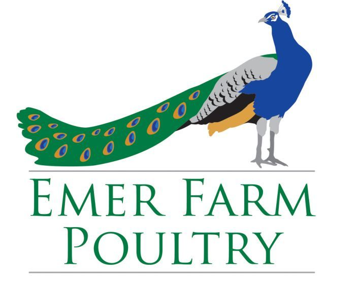 The completed Emer Farm Poultry logo