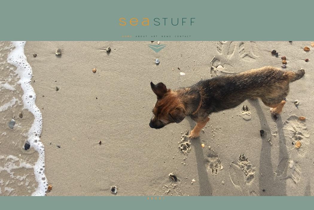 Sea Stuff.jpg