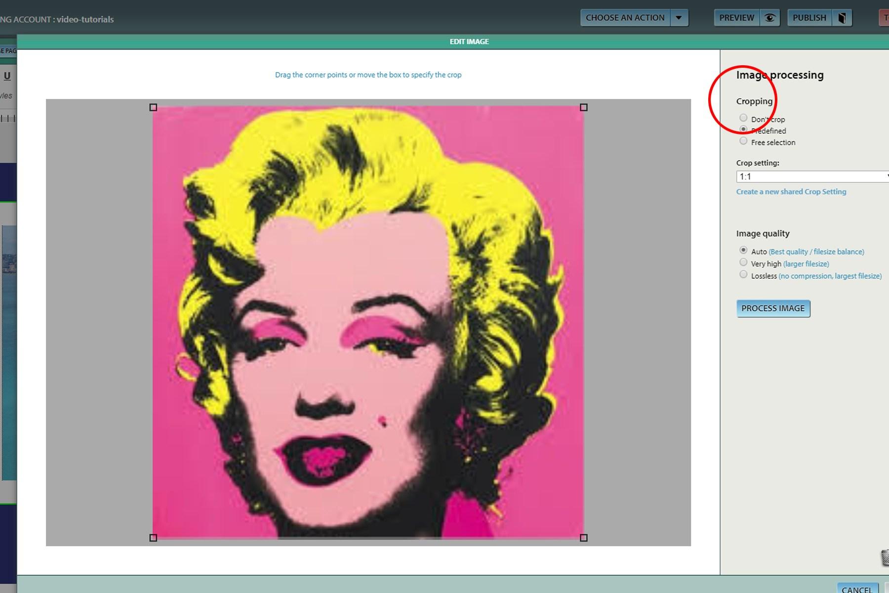 Image Processing - Cropping image