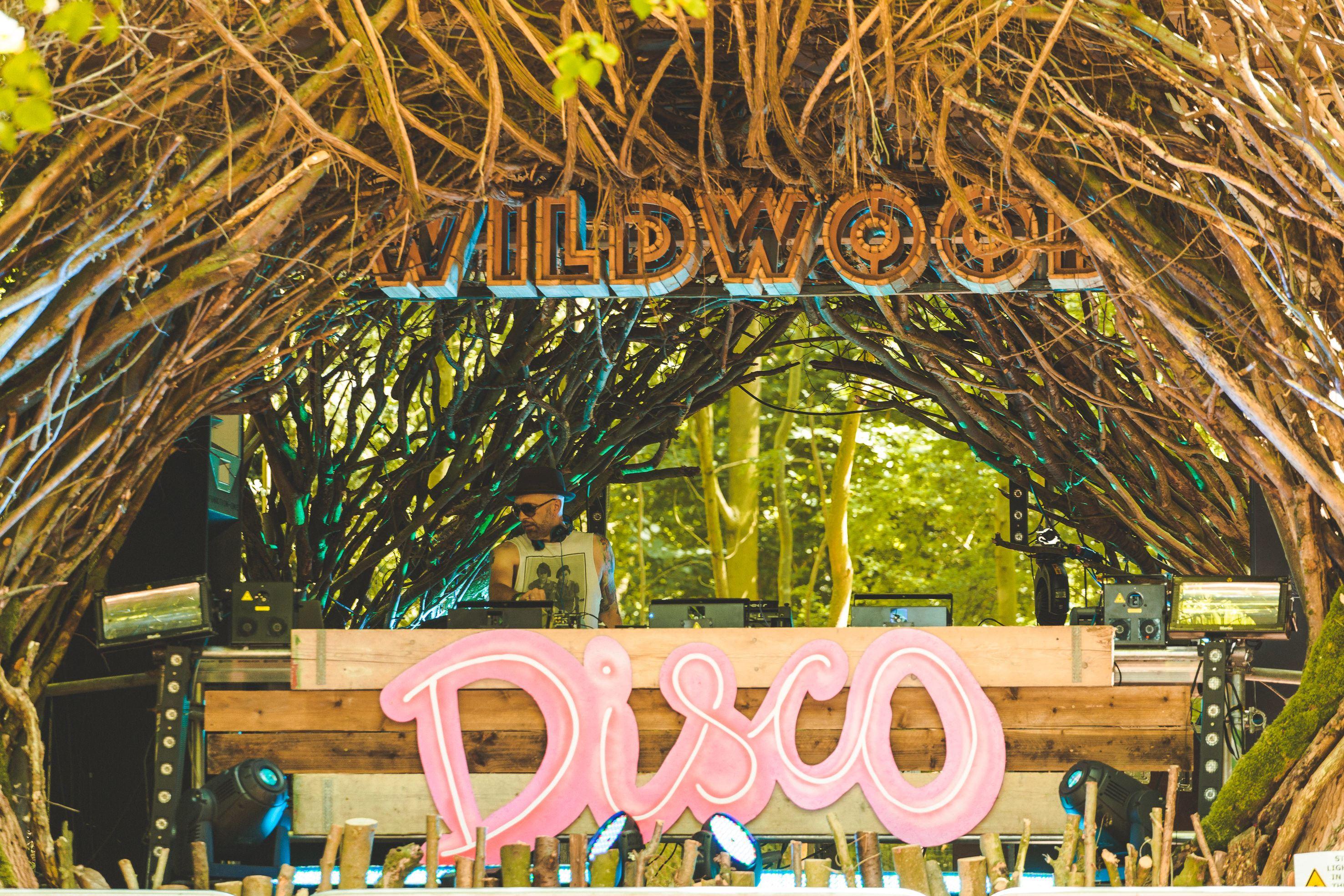 WILDWOOD DISCO 2018-4.jpg
