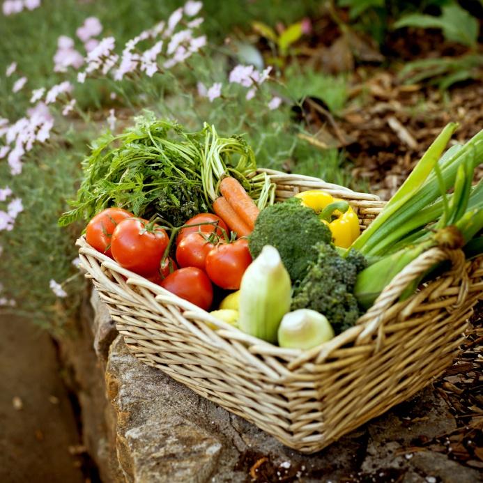 Delicious veg