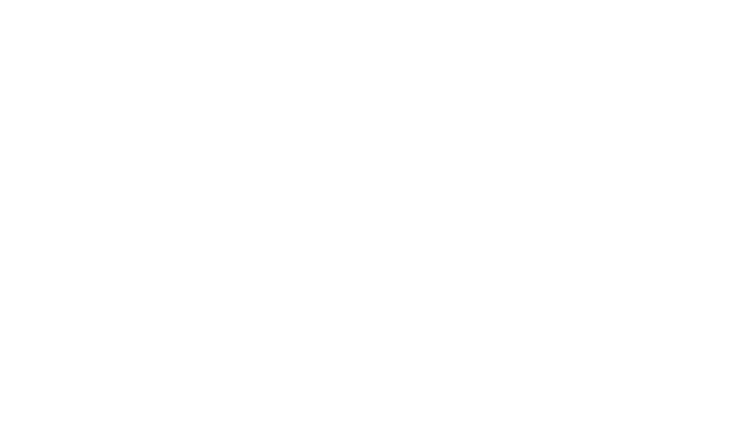 Waterside Network Group logo