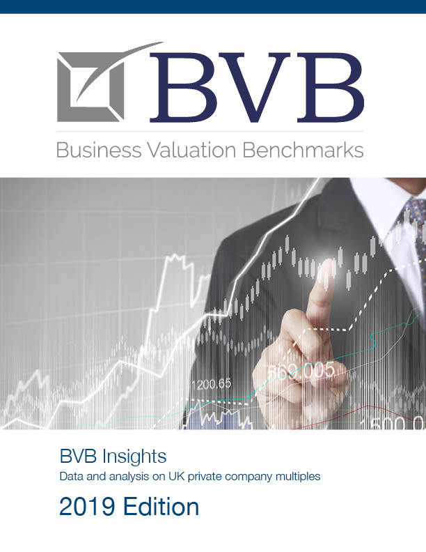 BVB Insights 2018 Cover