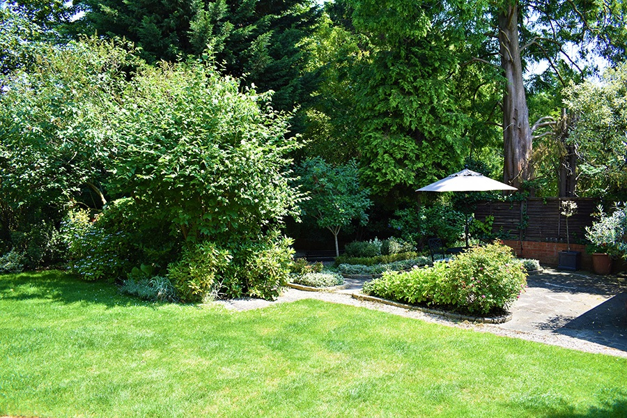 Packfords_Garden_2.jpg