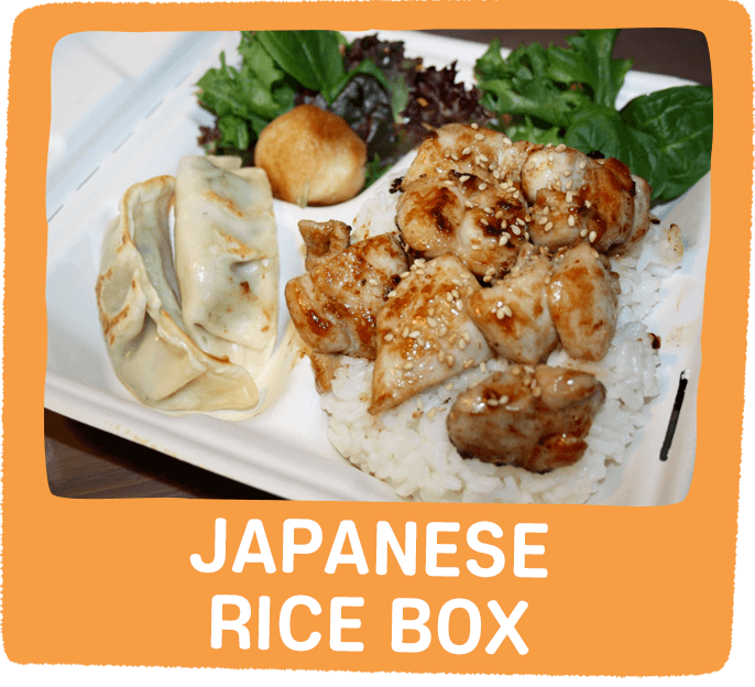 Japanese Rice Box
