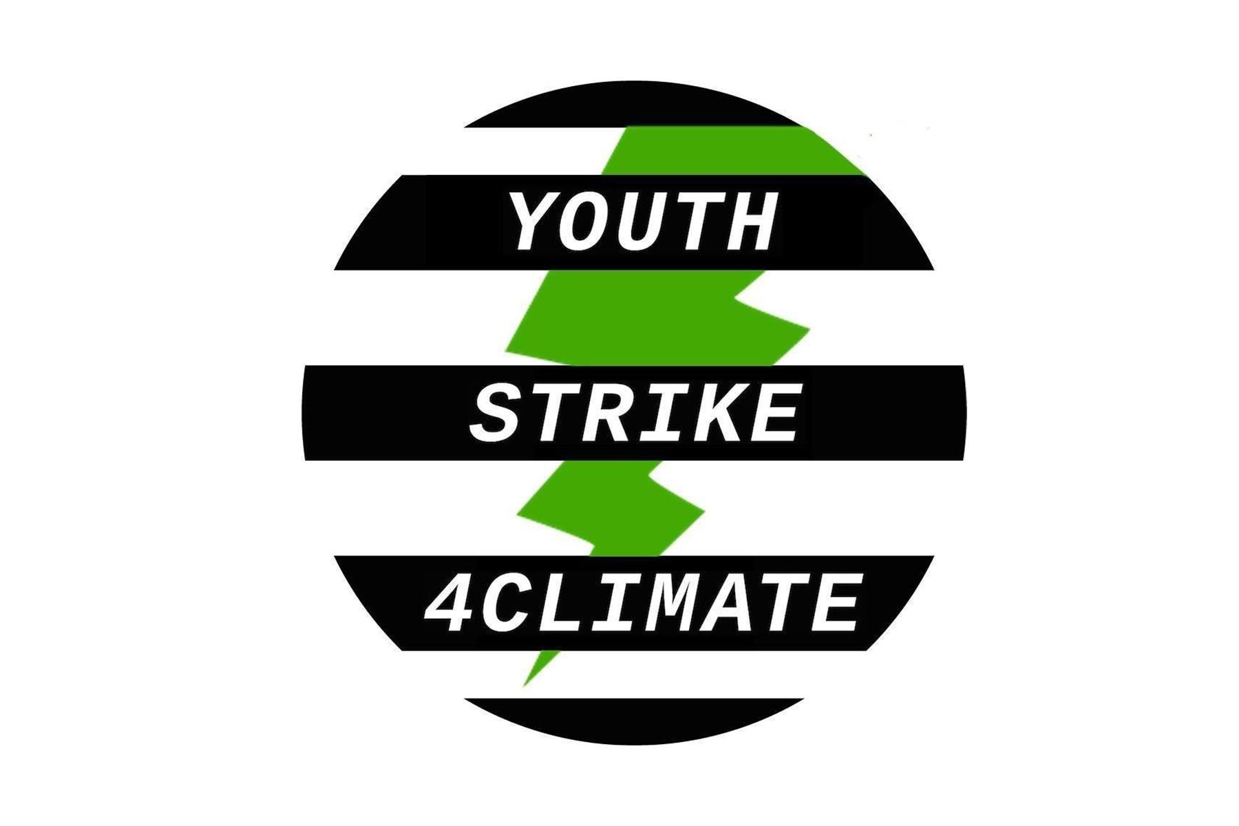 Youth Strike 4 Climate Movement  image
