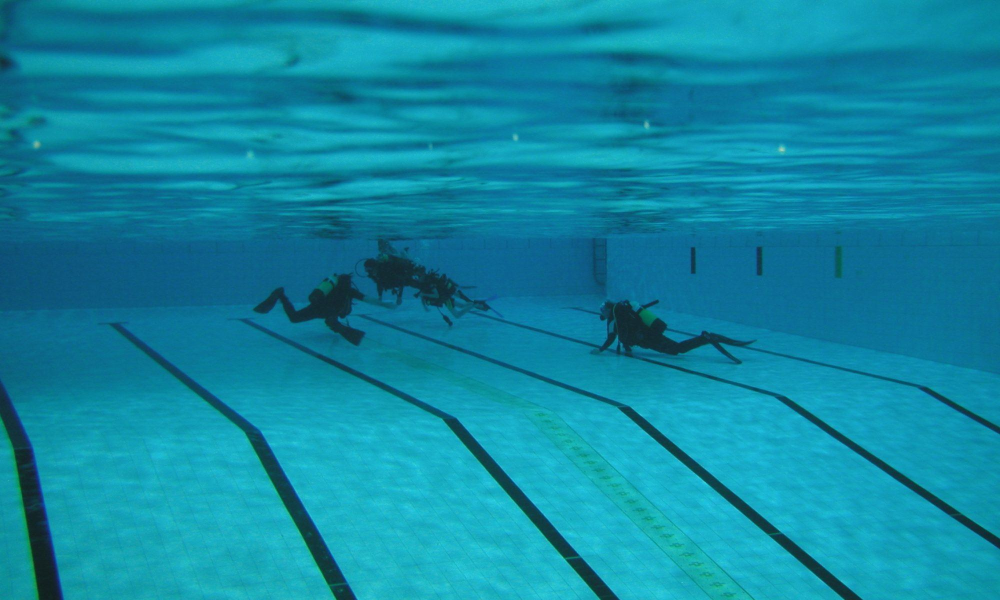 Want to Learn to Dive? image