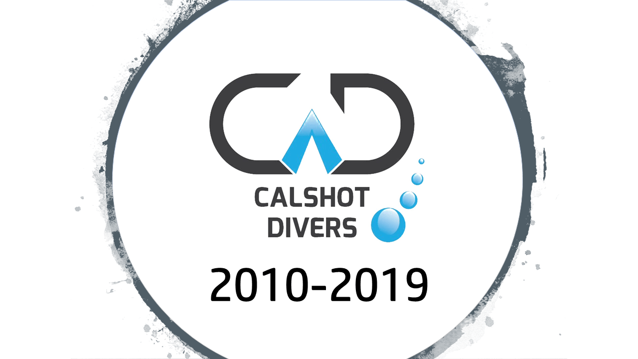 A decade of Calshot Divers image