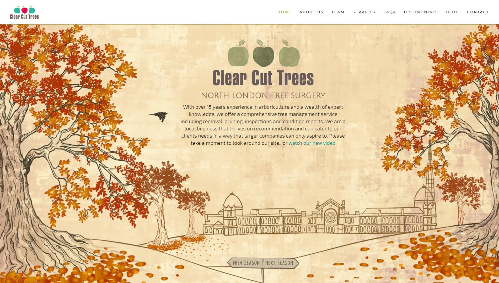 Clear Cut Trees.jpg