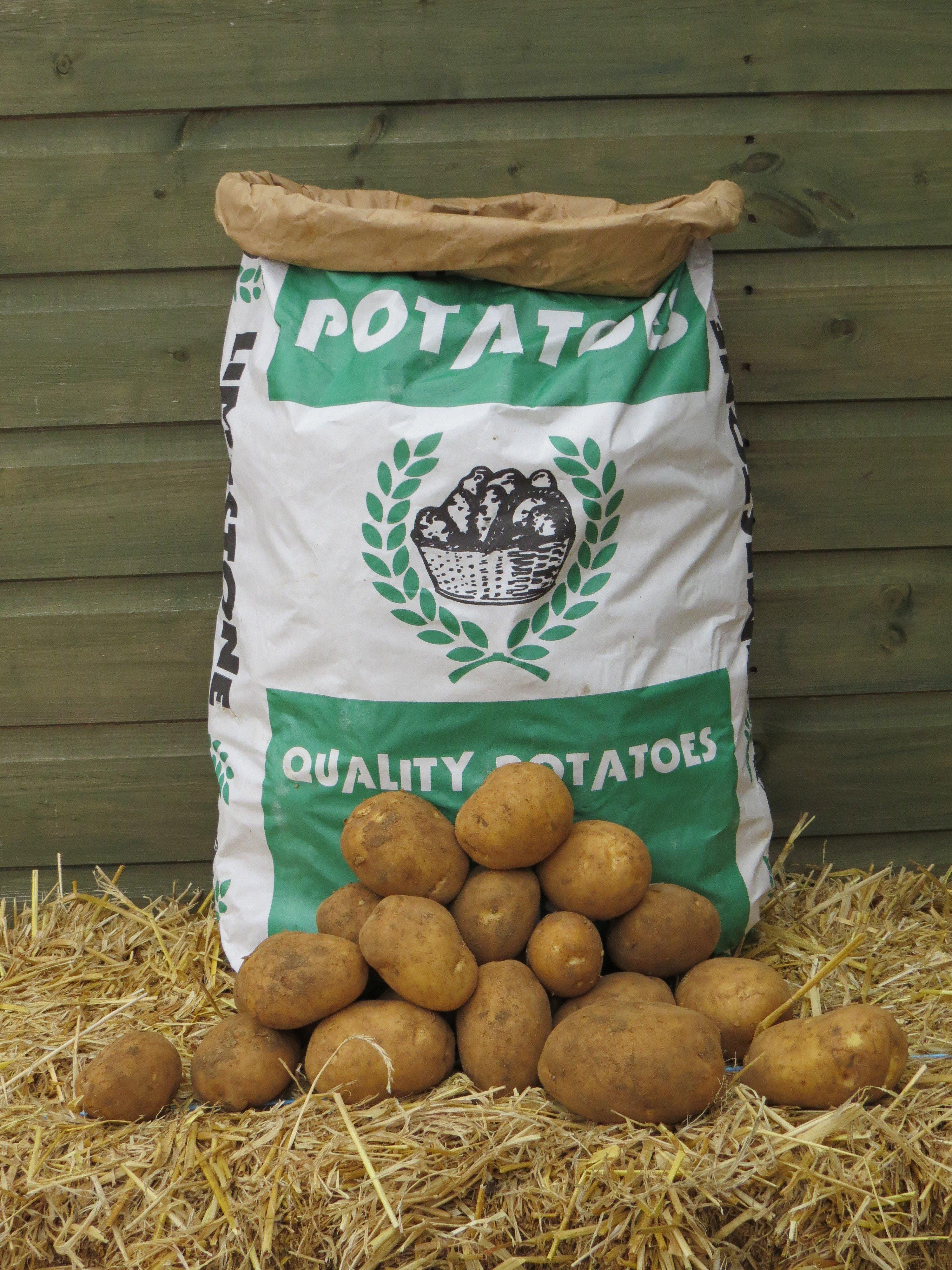 Potato Sack.JPG