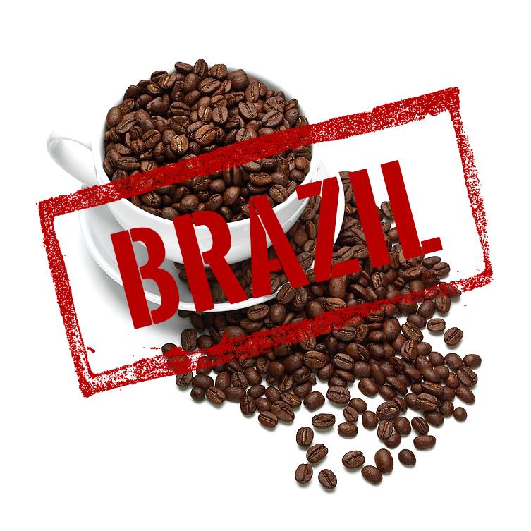 BRAZIL SANTOS image