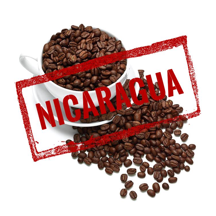 NICARAGUA PACAMARA image