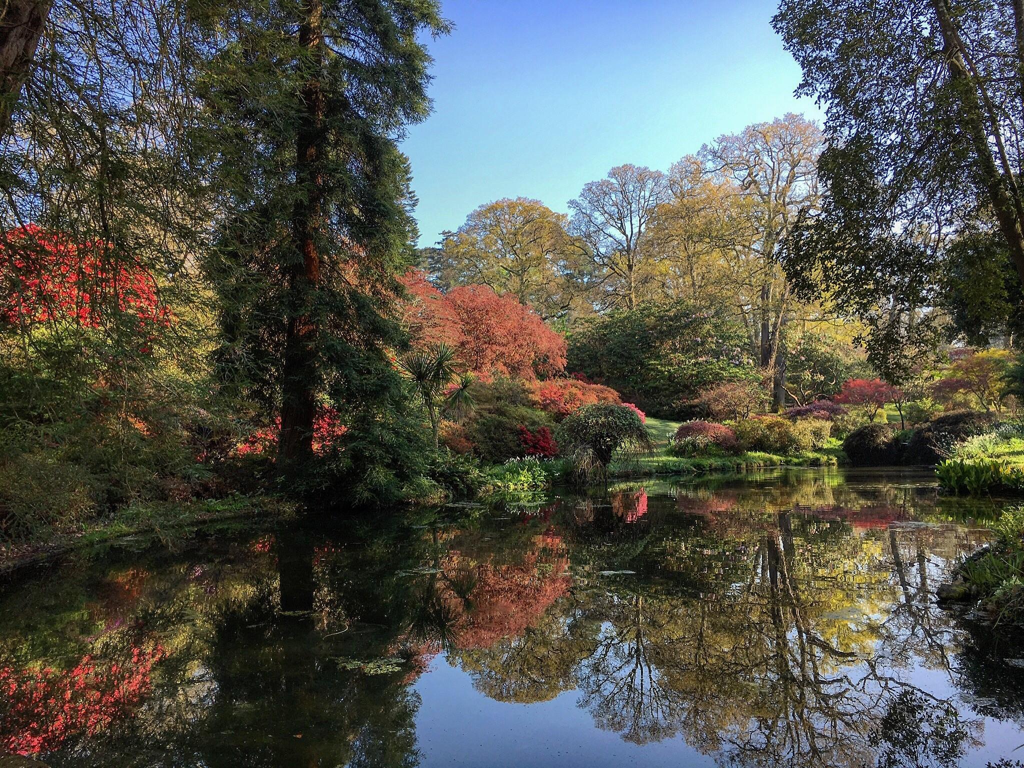 Exbury pond 1.jpg