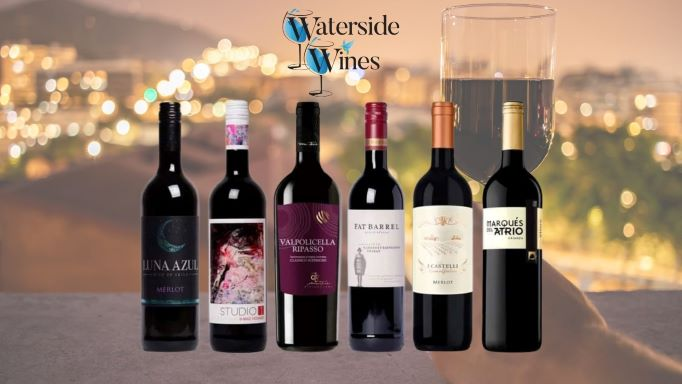 Our Special Red Wine Case